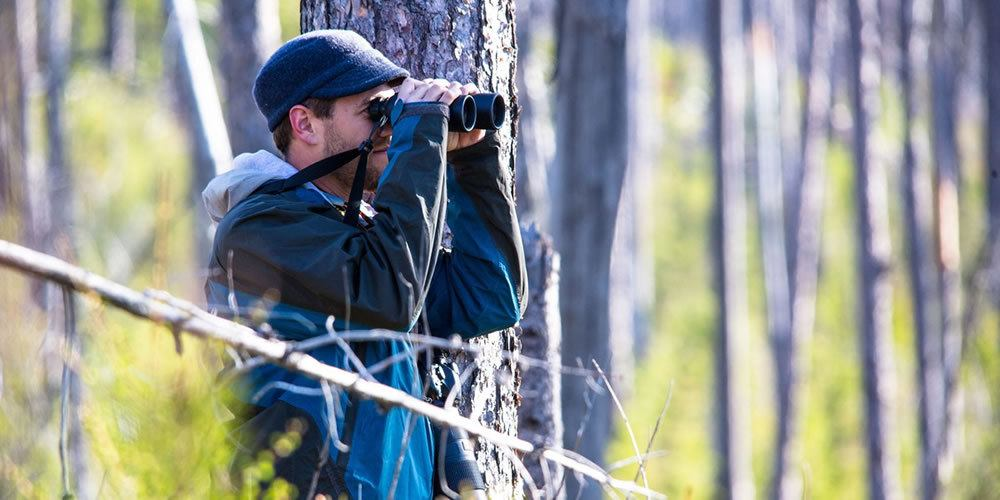 10 Best National Parks For Birding